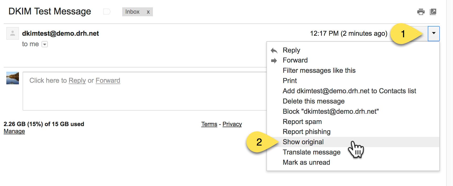 engine-testing-dkim-gmail-show-original.png